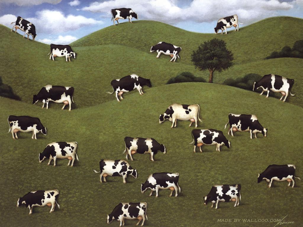 joan engels cows