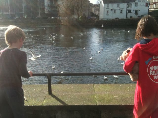 feeding the birds on the River Kent, Kendal
