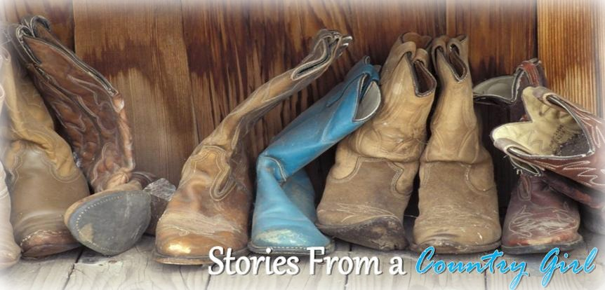 Stories From A Country Girl