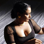 Most Sexiest and hot Photos of South Indian Actress