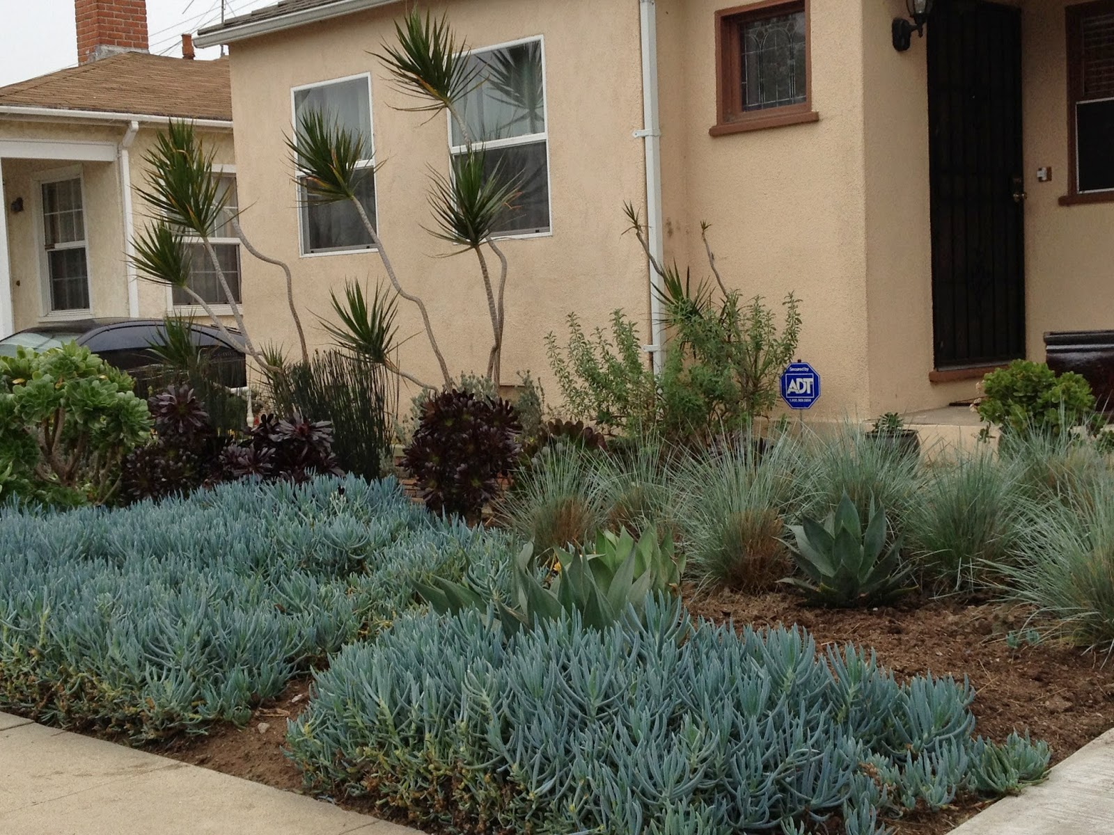 mar vista green garden showcase 3827 coolidge avenue cluster 1l