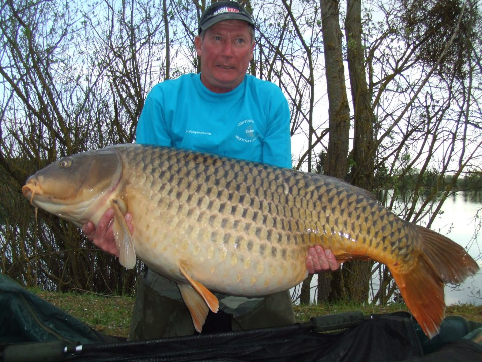 Colin+Smith+100+lb+8+oz+Common+Carp+Etang+Saussaie+lake+france+world+record+biggest+fish+in+the+world+ever+caught+big+huge+fishes+records+largest+monster.jpg