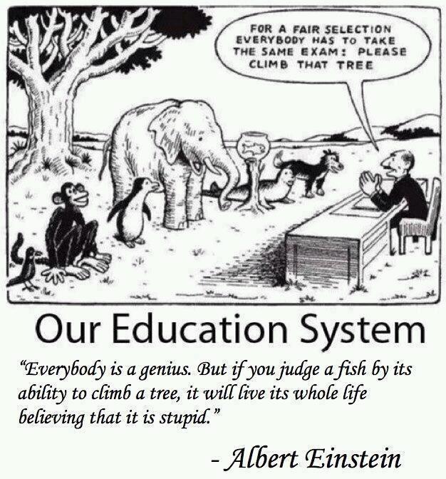 socioeconomic status on education