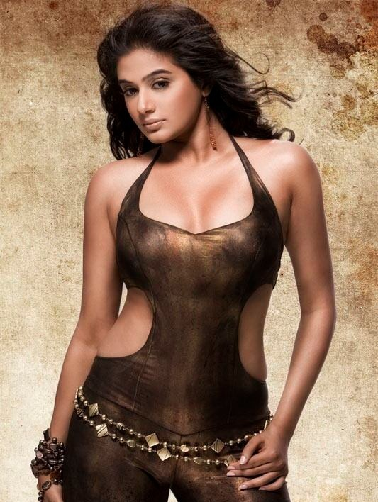 Priyamani Hot Photo1 - Priyamani Hot Photo Gallery