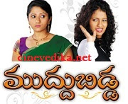 Watch Muddu Bidda Telugu Daily Serial
