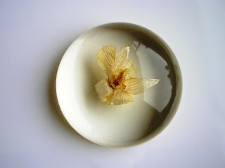 Custom Made Paperweight - Real Flower Paperweight