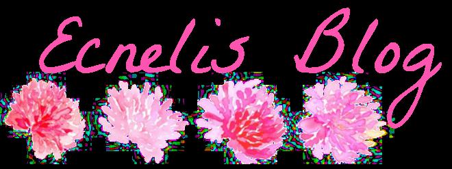 Ecnelis Blog