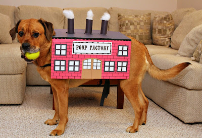 Poop Factory Dog Costume - turtlesandtails.blogspot.com