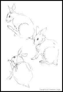 Rabbits