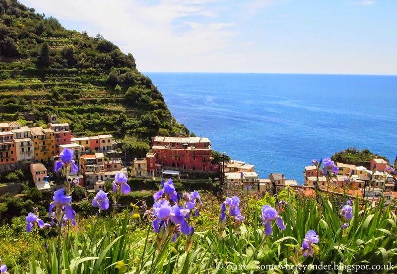 Looking back towards the ocean - Manarola - Cinque Terre, Italy