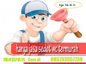 Jasa Tinja dan Sedot WC Driyorejo Call 085733557739