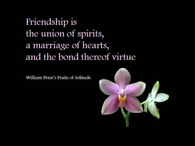quotes on friendship with pictures. quotes about friendship in