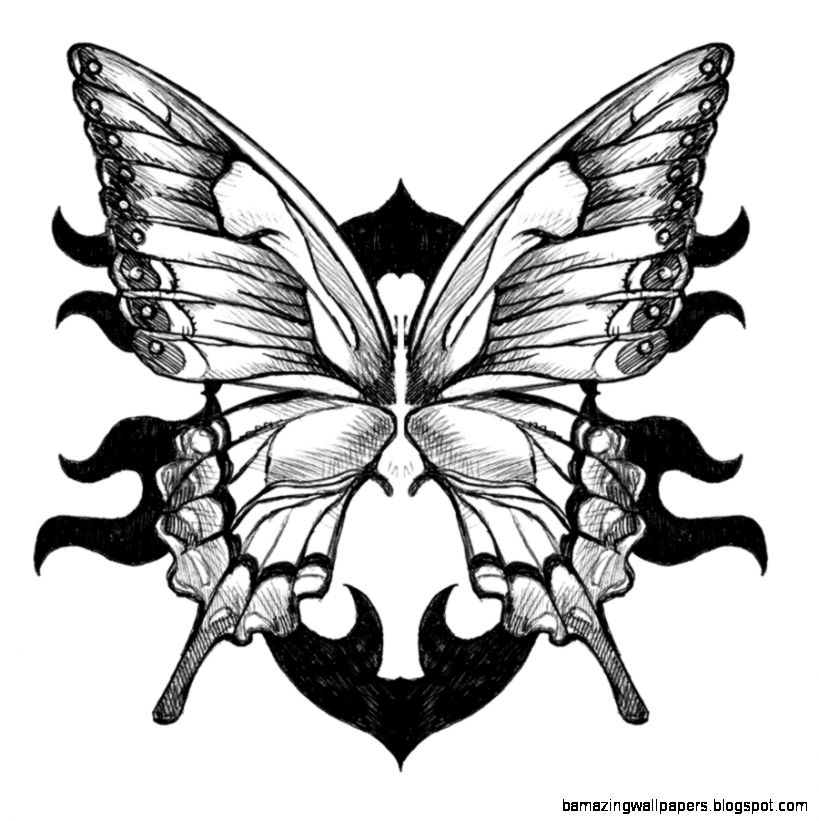Drawings Of Roses And Butterflies   ClipArt Best
