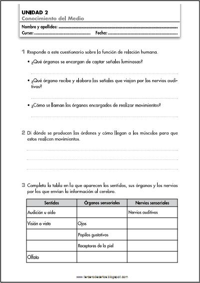 http://www.primerodecarlos.com/TERCERO_PRIMARIA/octubre/Unidad2/fichas/cono/ficha1.pdf