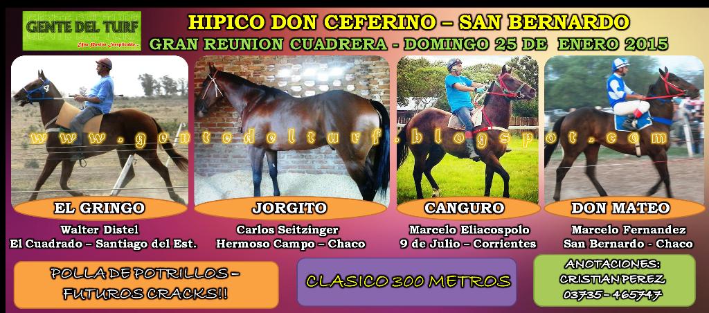 San Bernardo Polla de Potrillos 25-01