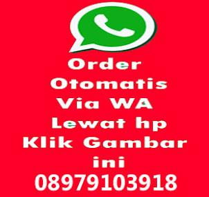 klik langsung order via WA
