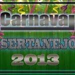 Capa Carnaval Sertanejo 2013 – O Melhor do Sertanejo Universitário carna2