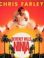 Beverly Hills Ninja (1997) [Latino]