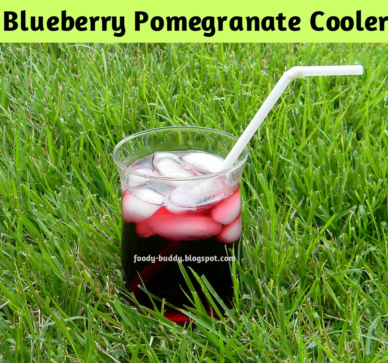 Foody - Buddy: Best Antioxidant Drink / Blueberry Pomegranate Cooler