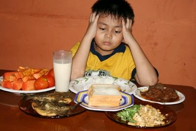 anak picky eater