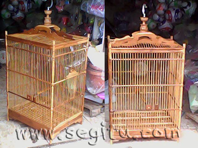 Sangkar Mandi Kucing Murah Sangkar Kucing Murah Delivery