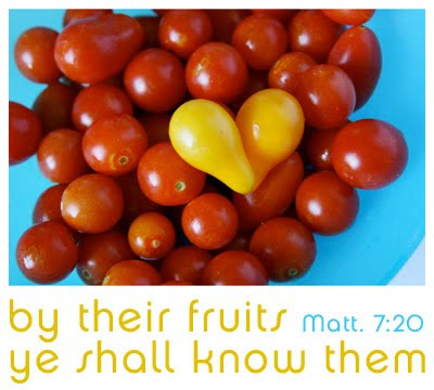 by their fruits ye