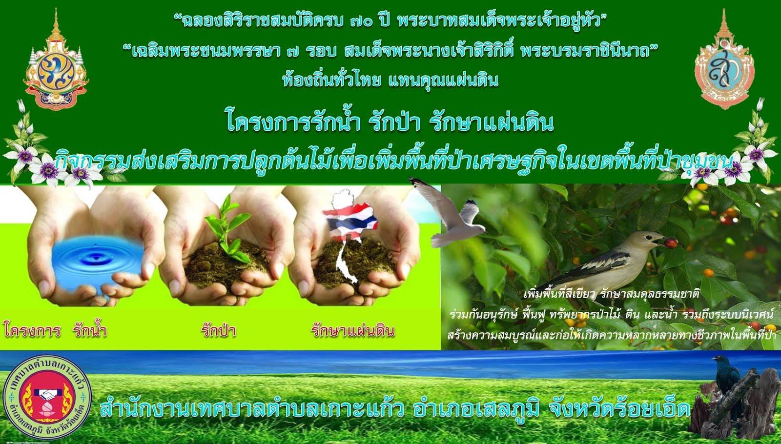 โครงการรักน้ำ รักป่า รักษาแผ่นดิน ครั้งที่ 2