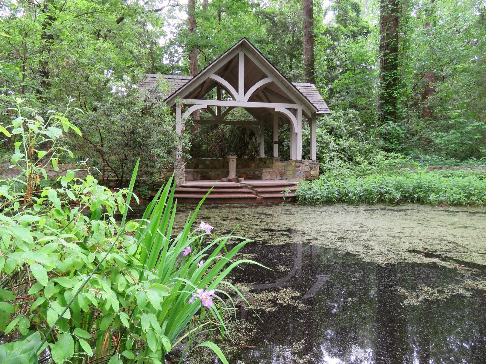 The blomquist garden of native plants a museum in the woods