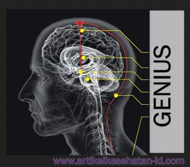 Cara Sehat Supaya Otak Jadi Cerdas