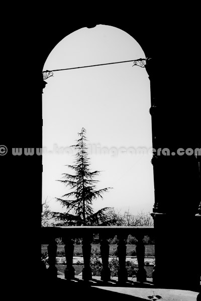 Viceregal Lodge or also known as Indian Institute of Advanced Studies is one of the best places to visit in Shimla Town. This Photograph is taken at same place. This a huge building having multiple corridors around it. This is one of the corridor in the backyard. The Cedar tree looks awesome through this huge window on other side of the corridor. Most of the part of this building in closed but some of the areas are accessible from outside. This whole campus has some beautiful gardens with lots of flowers and colorful plants.