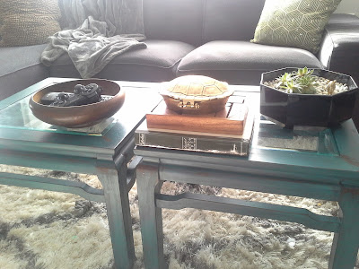 coffee table, nate berkus gold turtle, succulent plants