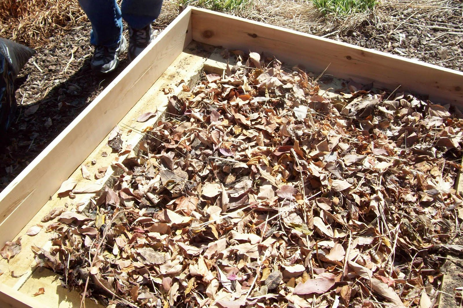 JeffCo Gardener: Adding Raised Beds to Your Garden By Joyce D\'Agostino