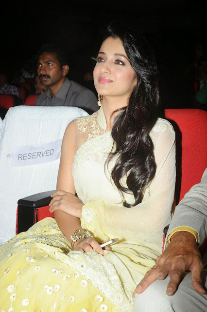 Trisha krishnan in Beautiful White Cream Saree and Transparent Net Blouse at Lion Movie Audio Launch