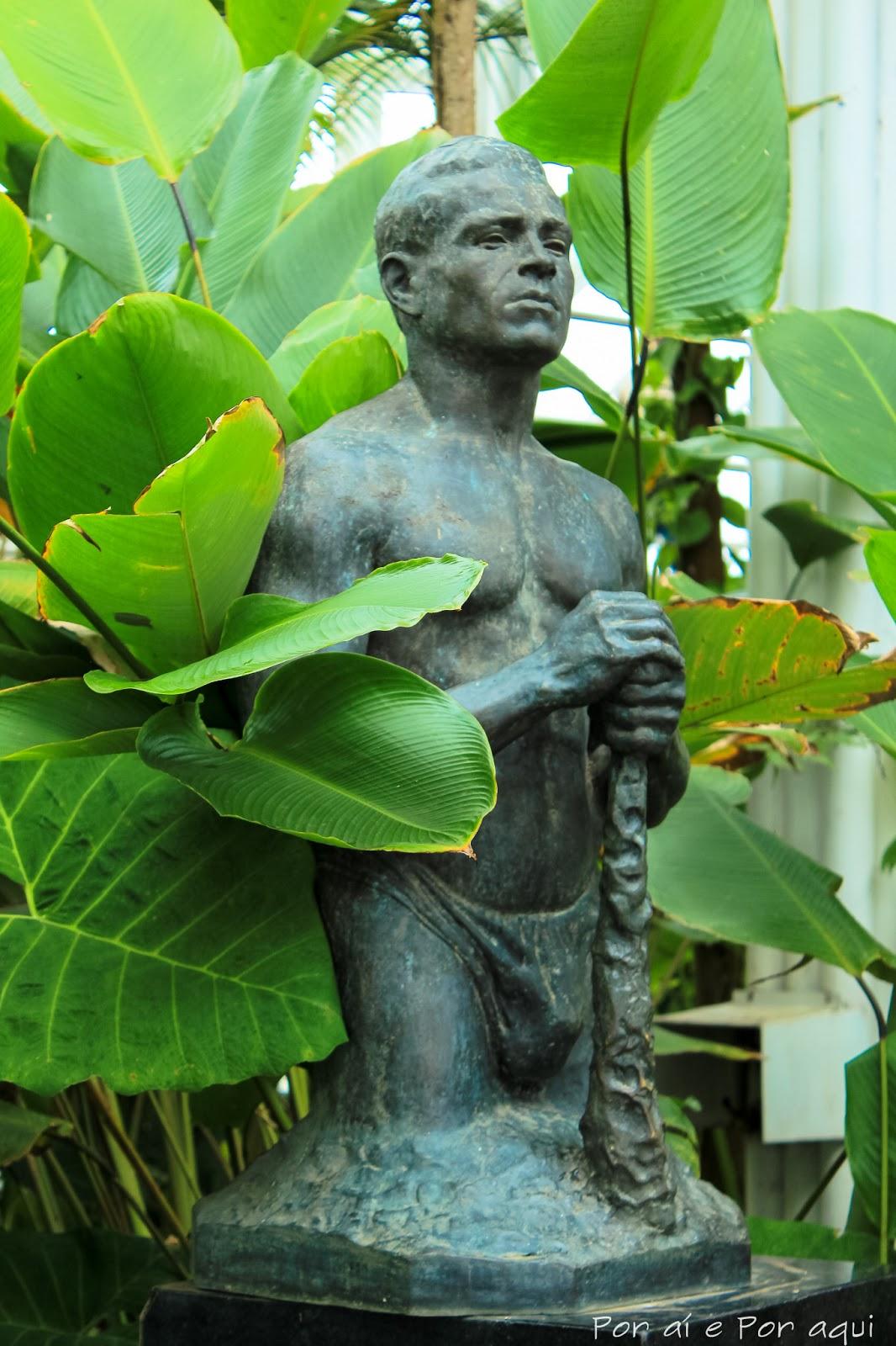 mini jardim curitiba:Curitiba: Jardim Botânico Por aí e Por aqui – Viagem de Casal