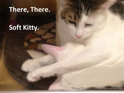 There, There. Soft Kitty. Copyright by Michelle Jones Online.
