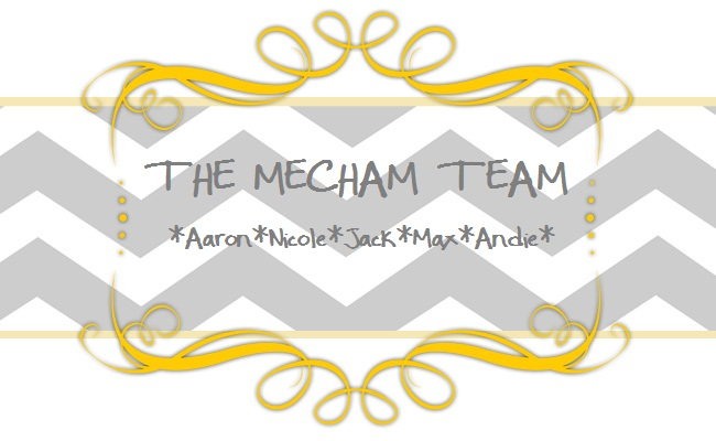 The Mecham Team