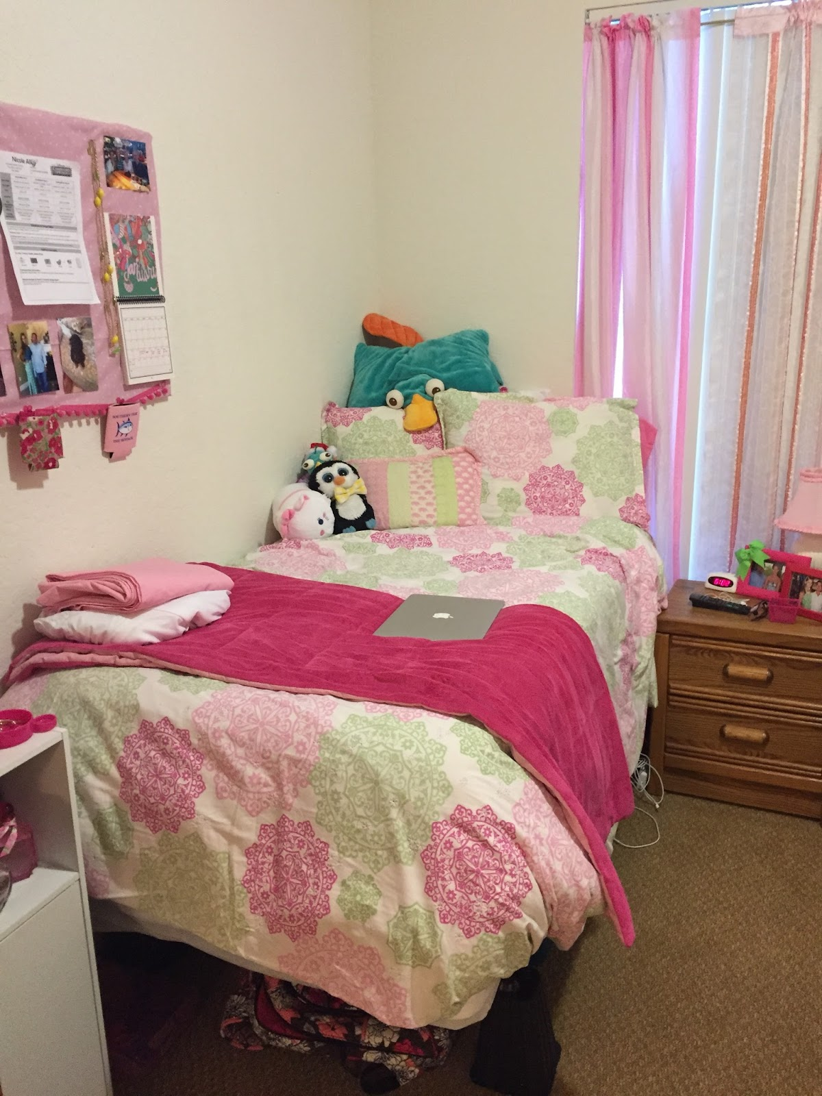 Colorful Cheer A Disney College Program and Lifestyle Blog DCP