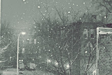 Winter 2010, Philadelphia, PA