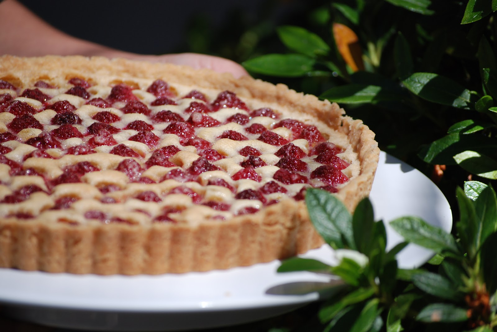Brown+Butter+Raspberry+Tart+II.JPG