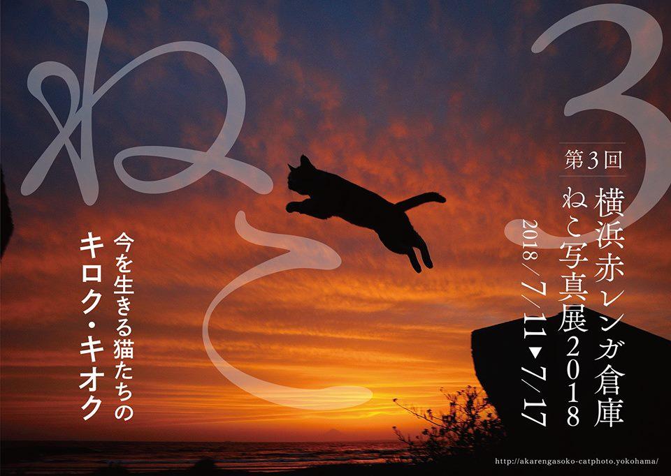 横浜赤レンガ倉庫ねこ写真展2018