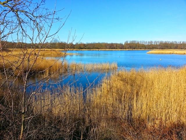 Spyckerscher See