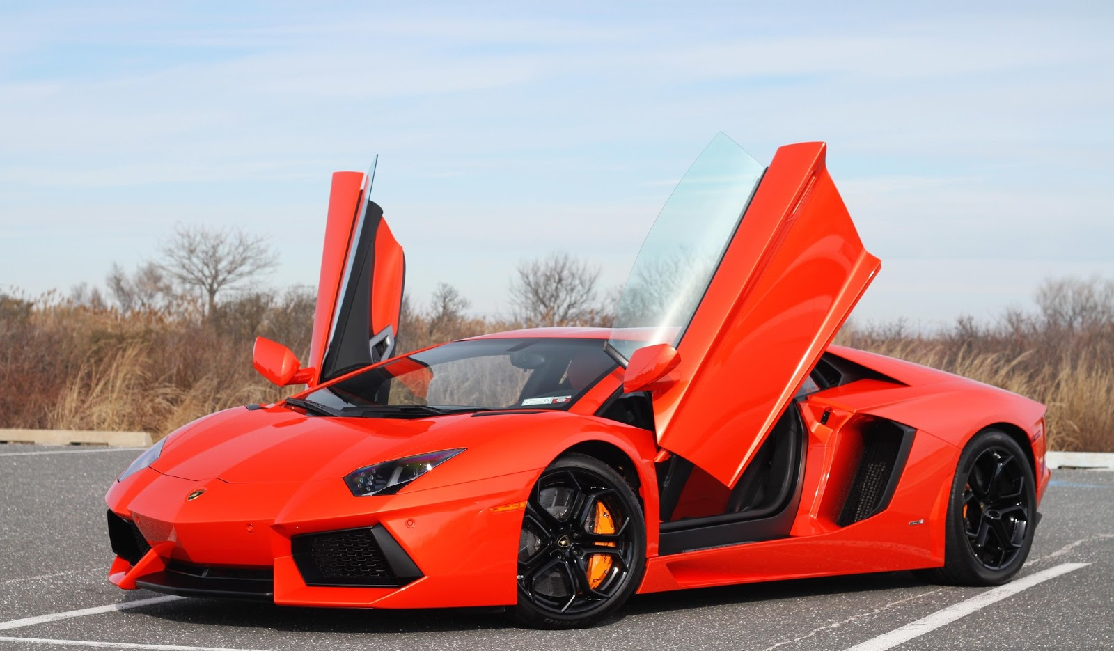 lamborghini aventador lambo aventador technology world. Black Bedroom Furniture Sets. Home Design Ideas