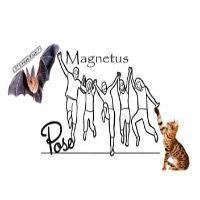 Magnetus