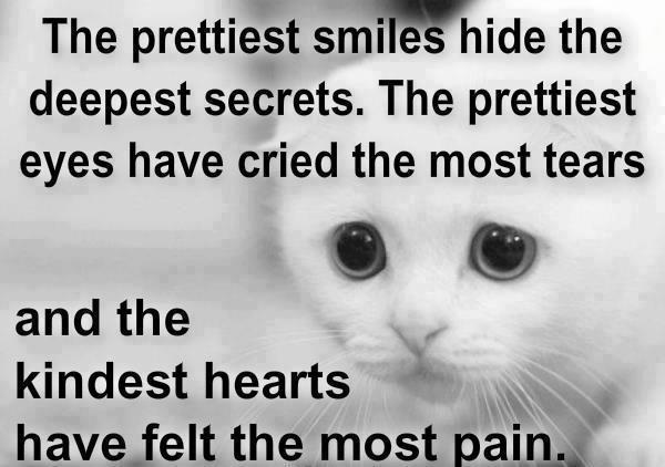 The prettiest smiles hide the deepest secrets. The prettiest eyes have cried the most tears and the kindest hearts have felt the most pain.