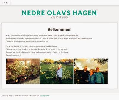 Hjemmesider til Nedre Olavs Hagen Velforegning