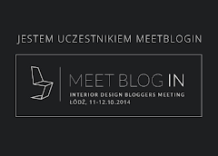 MEET BLOG IN