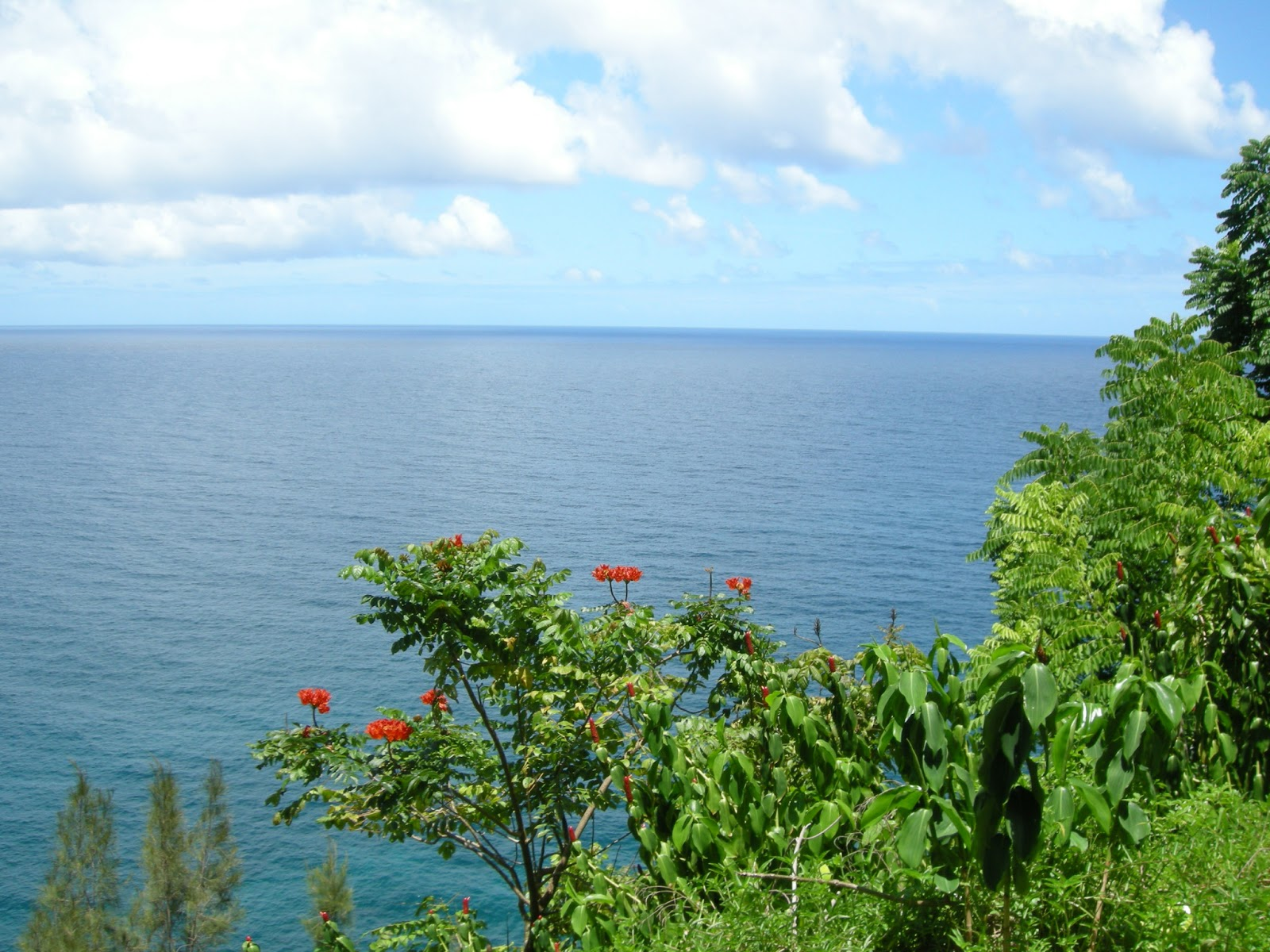 Consejos e información para viajar a Hawai