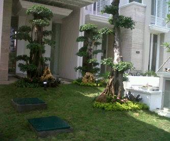Tukang Taman Malang Konsep Taman Minimalis