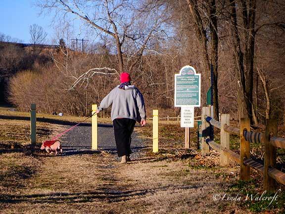 woman walking small dog on trail