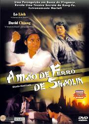 A Mão de Ferro de Shaolin Dublado Online